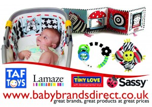 Activity Amp Learning Toys Mix And Match Toys Lamaze