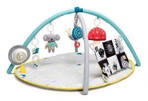 Taf Toys Gym Supplier