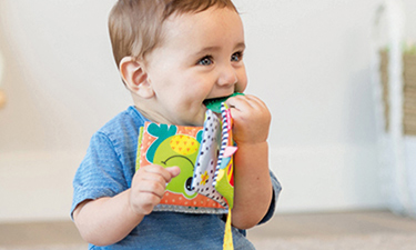Fabric Baby Books