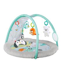 Bright Starts Activity Gym Arctic Glow