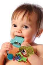 Distributor of Infantino Go Gaga Slide & Chew Teether Keys