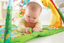 Baby products wholesaler of Fisher-Price Rainforest Melodies & Lights Deluxe Gym