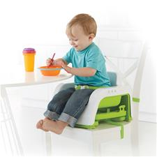 Fisher-Price Grow With Me Portable Booster