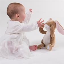Wholesale of Guess How Much I Love You Peekaboo Hare