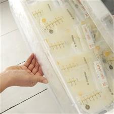 Wholesale of Medela Breastmilk Storage Bag 25Pk