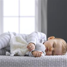 Wholesale of Silvercloud Counting Sheep Comforter