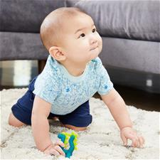 Supplier of Boon GROWL Silicone Teether Dragon