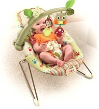 Baby products distributor of Fisher-Price Woodsie Bouncer