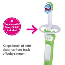 Baby products distributor of MAM Training Brush With Safety Shield