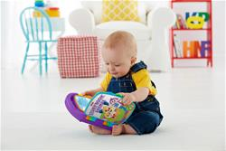 Fisher-Price Laugh & Learn Story Book Rhymes
