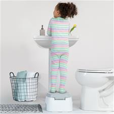 Baby products distributor of Summer Infant 2 In 1 Step Up Potty