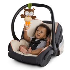 Baby products wholesaler of Bright Starts Simply Teethe and Take Forest Pal