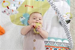 Baby products supplier of Fisher-Price Perfect Sense Deluxe Gym