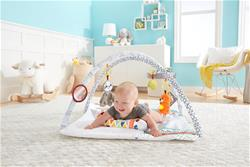 UK distributor of Fisher-Price Perfect Sense Deluxe Gym