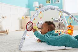 UK wholesaler of Fisher-Price Perfect Sense Deluxe Gym