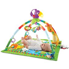 Distributor of Fisher-Price Rainforest Melodies & Lights Deluxe Gym
