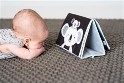 UK supplier of Taf Toys Kimmy Koala Tummy Time Book