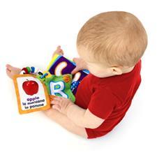 Baby Einstein World Around Me Discovery Cards