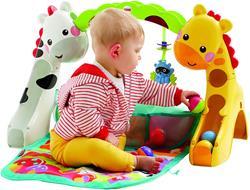 Fisher-Price Newborn to Toddler Play Gym