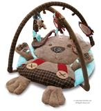 Little Bird Told Me Percy Pup Multi-Activity Playgym