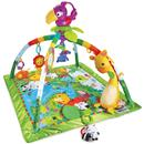 Fisher-Price Rainforest Product Demonstration