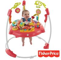NEW - Fisher-Price Baby Gear