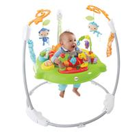 New Fisher-Price Rainforest Products!